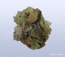 moruše-list, sangye, Mori folium  - 30 g_nahled