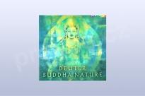 Buddha Nature - Deuter