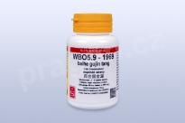 WBO5.9 - baihe gujin tang - pian/tablety