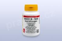 WBO1.9 - liuwei dihuangwan - pian/tablety