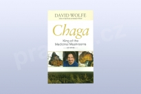Chaga: King of the Medicinal Mushrooms, David Wolfe