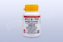 WCL1.9 - danggui buxue tang - pian/tablety EXPIRACE