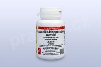 magnolka-klanopraška, wuweizi 20 g - instantní prášek
