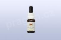 Spinifex, květová esence 30 ml
