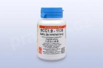 BCC1.9 - baihu jia renshen tang - pian/tablety