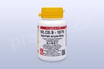WLCB.9 - baochan wuyou fang - pian/tablety
