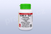 NAM2.9 - erchentang - pian/tablety