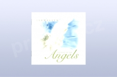 Journey to the Angels - Llewellyn