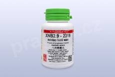 XNB2.9 - neixiao luoli wan