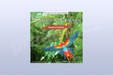 Birds in the Rainforest - David Sun (CD)