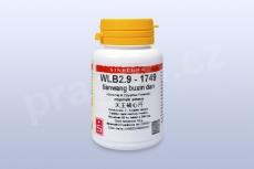 WLB2.9 - tianwang buxin dan - tablety