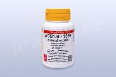 WCB1.9 - xiyangshenpian - pian/tablety