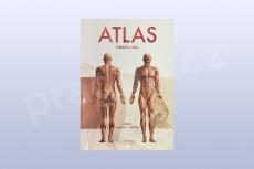 Atlas lidského těla, Vigué - Martín - Ferrón