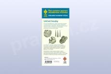 Kapesní průvodce houbové výživy, Základní houbová výživa