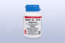 BWO1.9 - qingfeitang - pian/tablety