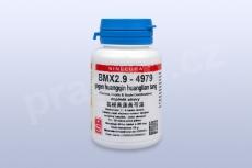 BMX2.9 - gegen huangqin huanglian tang
