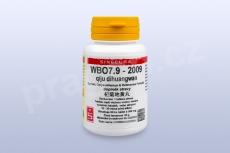 WBO7.9 - qiju dihuangwan - pian/tablety
