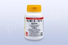 WJM1.9 - qipiwan - pian/tablety