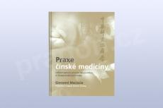Praxe čínské medicíny, Giovanni Maciocia