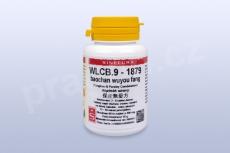 WLCB.9 - baochan wuyou fang - tablety