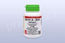 MAH1.9 - wulingsan - tablety