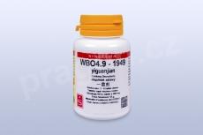 WBO4.9 - yiguanjian - tablety